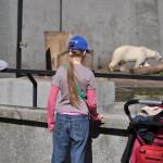 dzieci i niedźwiedź