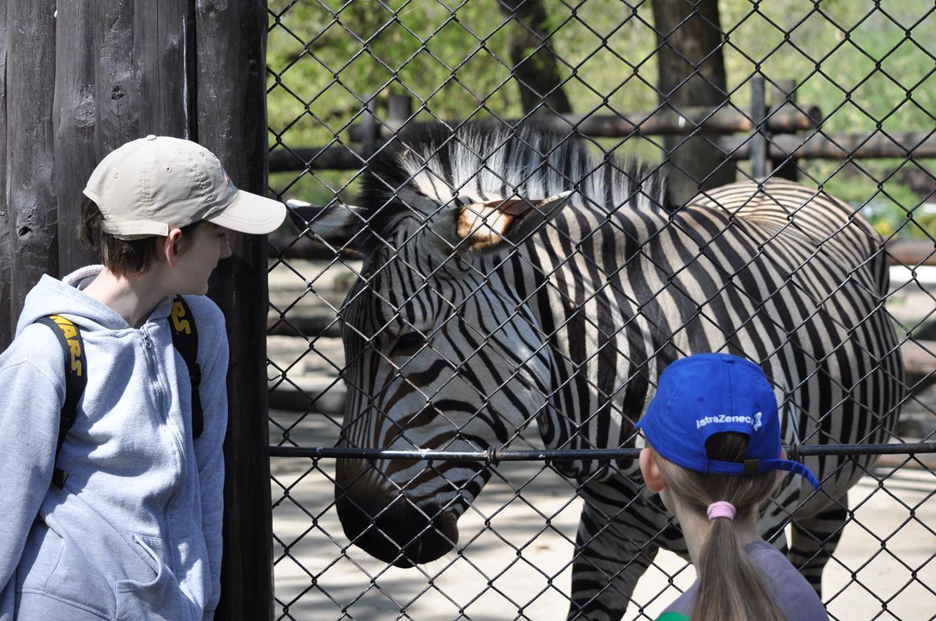 Wizyta w zoo
