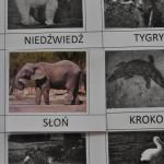 karta slon