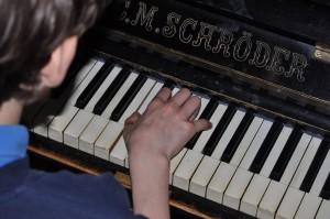 krab na pianinie