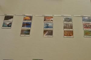 gromady kręgowców karty plus napisy