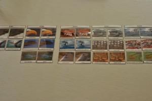 gromady kręgowców karty