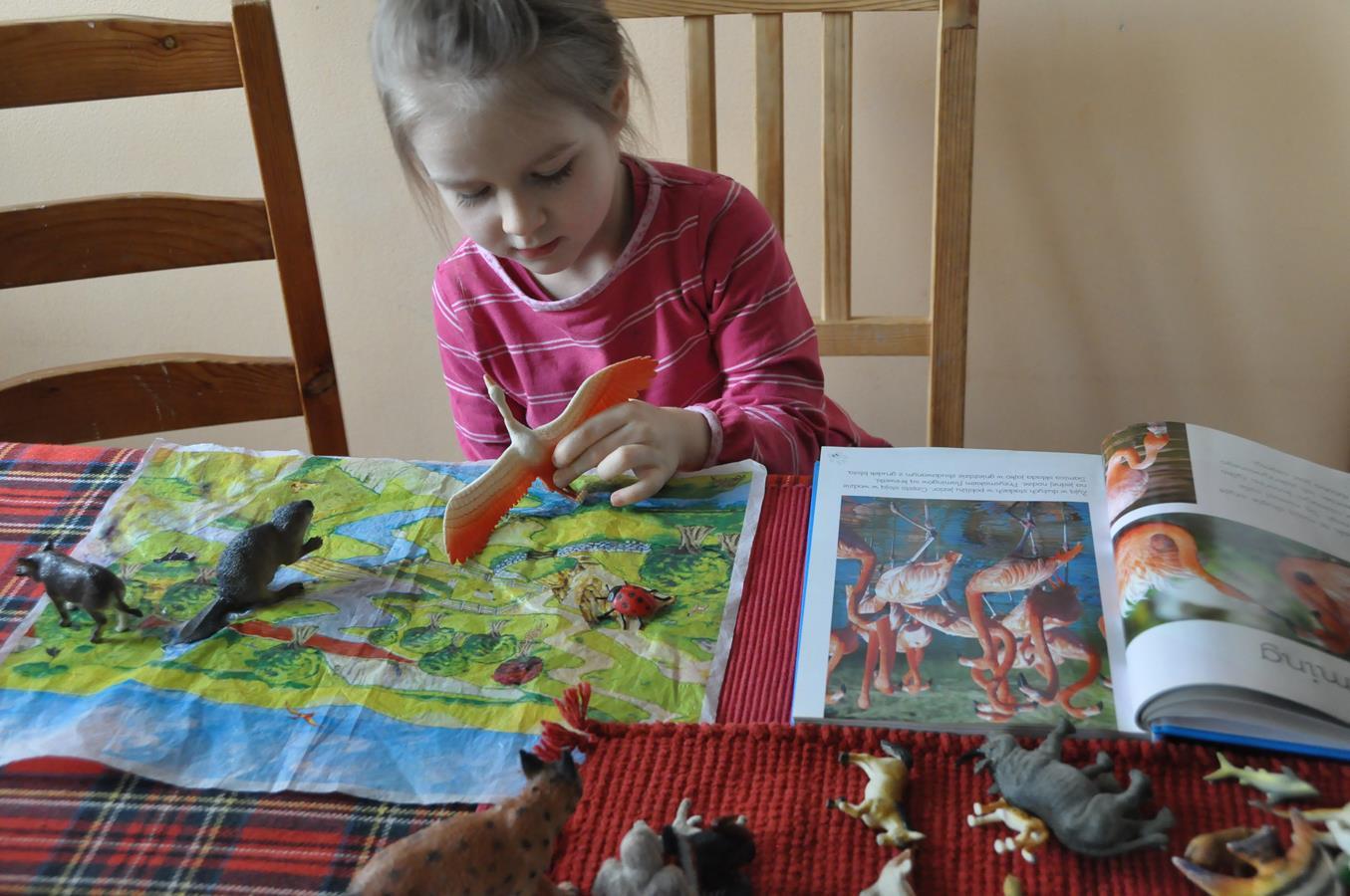 Figurki zwierząt i atlas